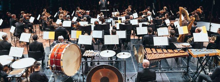Orchestra Wellington.jpg