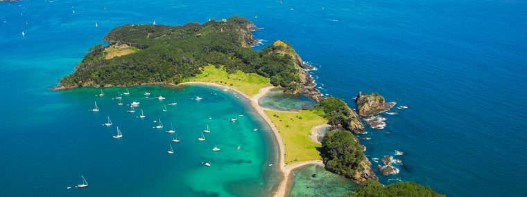 Roberton Island, Bay of Islands.jpg